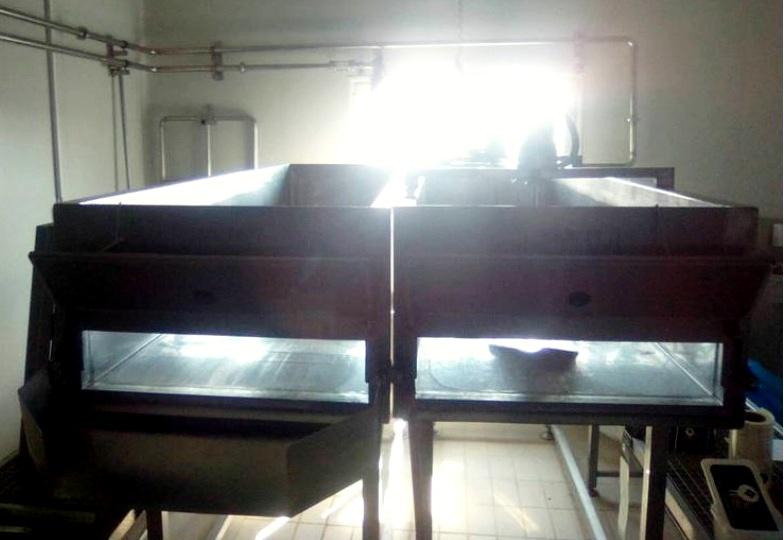 Greek Feta Cheese and Mizithra plant, 1000 LPH.